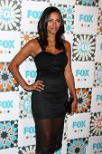 LOS ANGELES - JUL 20:  Jessica Lucas at the FOX TCA July 2014 Party at the Soho House on July 20, 20