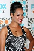 LOS ANGELES - JUL 20:  Grace Gealey at the FOX TCA July 2014 Party at the Soho House on July 20, 2014 in West Hollywood, CA