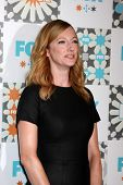 LOS ANGELES - JUL 20:  Judy Greer at the FOX TCA July 2014 Party at the Soho House on July 20, 2014