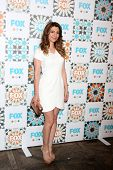 LOS ANGELES - JUL 20:  Nasim Pedrad at the FOX TCA July 2014 Party at the Soho House on July 20, 201