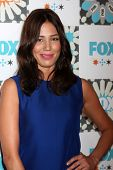 LOS ANGELES - JUL 20:  Michaela Conlin at the FOX TCA July 2014 Party at the Soho House on July 20, 2014 in West Hollywood, CA