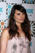 LOS ANGELES - JUL 20:  Mia Maestro at the FOX TCA July 2014 Party at the Soho House on July 20, 2014