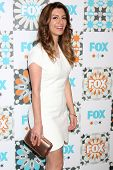 LOS ANGELES - JUL 20:  Nasim Pedrad at the FOX TCA July 2014 Party at the Soho House on July 20, 2014 in West Hollywood, CA