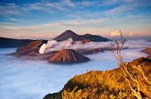 picture of bromo  - Sunrise over volcanic complex of Mt - JPG