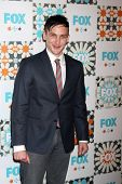 LOS ANGELES - JUL 20:  Robin Lord Taylor at the FOX TCA July 2014 Party at the Soho House on July 20