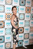 LOS ANGELES - JUL 20:  Virginia Kull at the FOX TCA July 2014 Party at the Soho House on July 20, 20