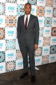 LOS ANGELES - JUL 20:  Kendrick Sampson at the FOX TCA July 2014 Party at the Soho House on July 20,