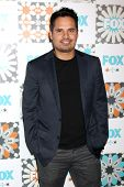 LOS ANGELES - JUL 20:  Michael Pena at the FOX TCA July 2014 Party at the Soho House on July 20, 2014 in West Hollywood, CA