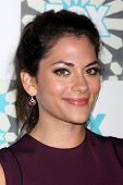 LOS ANGELES - JUL 20:  Inbar Lavi at the FOX TCA July 2014 Party at the Soho House on July 20, 2014