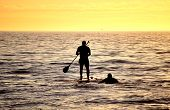 Silhouette of Stand up paddling surfer