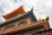 picture of lamas  - Tibetan Lamaist Buddhist mountain temple in the exile home of the Dalai Lama Dharamsala - JPG