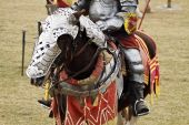 Knight's Steed