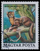 Stamp Series Wildlife Protection