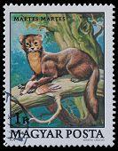 Stamp Series Wildlife Protection
