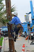 Man Pole Climbing