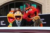 LOS ANGELES - MAR 11:  Fozzie, Walter, Animal at the