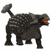 picture of ankylosaurus  - Ankylosaurus was an armor - JPG