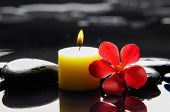 picture of stone-therapy  - Beautiful red orchid with candle and therapy stones  - JPG