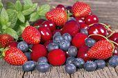 Wild Berries And Cherries