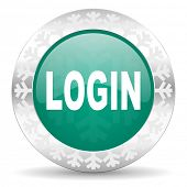 login green icon, christmas button