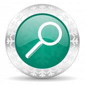 search green icon, christmas button