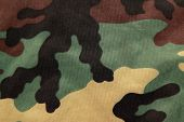 Camouflage. A background.