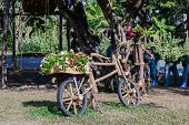 Gardening Ideas With Wooden Bike.