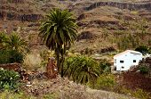 Parque Natural de Pilancones, Gran Canaria, Spain