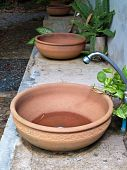 picture of mixing faucet  - Pottery washbasin decorate with small fern and climber - JPG