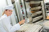 picture of baguette  - Chef preparing baguettes - JPG