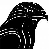 pic of hawks  - Hawk Eagle Bird Head Silhouette Vector Illustration - JPG