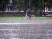 Cycle Of Rain