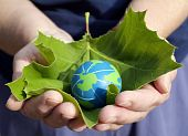 stock photo of environmentally friendly  - person holding a leaf with small earth - JPG