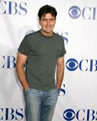 LOS ANGELES - JUL 15:  Charlie Sheen arrives at the CBS TCA Party at  a Hotel on July 15, 2010 in Pasadena, CA