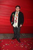 LOS ANGELES - NOV 28:  Rico Rodriguez arrives at the 2010 Hollywood Christmas Parade at Hollywood Boulevard on November 28, 2010 in Los Angeles, CA