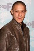 PASADENA, CA - JAN. 11: Theo Rossi arrives at the FOX TCA Winter 2011 Party at Villa Sorriso on Janu