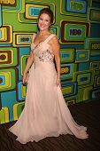 LOS ANGELES - JAN 16:  Emily Gerson Saines arrives at HBO 2011 Golden Globe Awards Party at Beverly Hilton Hotel on January 16, 2011 in Beverly Hills, CA