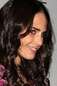 LOS ANGELES - JAN 27:  Jordana Brewster arrives at