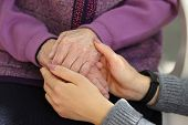 Hands Of Young Adult And Senior Women. Senior And Young Holding Hands Outside. Elderly Concept poster