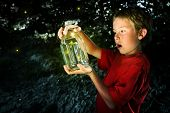 pic of fireflies  - Boy with a jar of fireflies - JPG