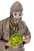 Man dressed in protection suit and gas mask is exploring vegetables