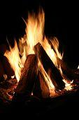 Bonfire Close Up On A Black Background