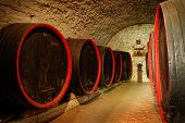 Barrels in a wine-cellar from Transylvania