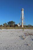 image of sea oats  - The Gasparilla Island Rear Range Light on Gasparilla Island Florida viewed from the beach with sea oats  - JPG