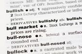 Dictionary Definition Of Bull Market