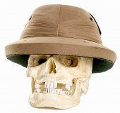 Desert Skull Wearing Pith Helmet