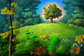 foto of apple tree  - forest with apple tree