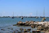 Sailboats By The Seashore