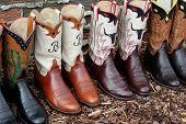 Row Of Design Boots