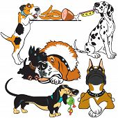 stock photo of scottie dog  - set with dog breeds - JPG